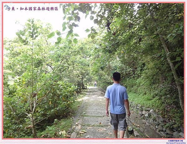 知本國家森林遊樂區-24