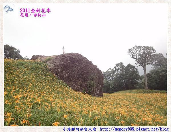 花蓮。赤柯山