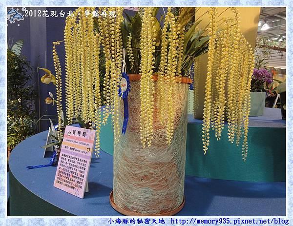 035黃穗蘭