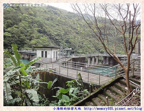 烏來~內洞國家森林遊樂區009