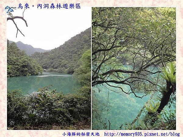 烏來~內洞國家森林遊樂區013