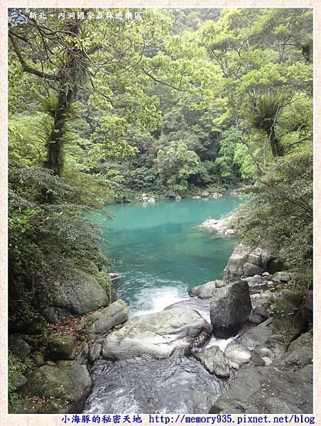 烏來~內洞國家森林遊樂區022