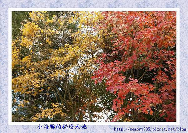 和平區~福壽山農場03
