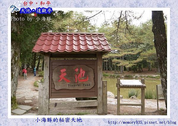 和平區~福壽山農場06