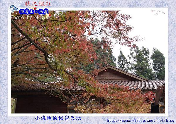 和平區~福壽山農場10