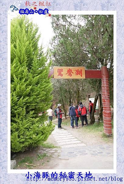 和平區~福壽山農場25