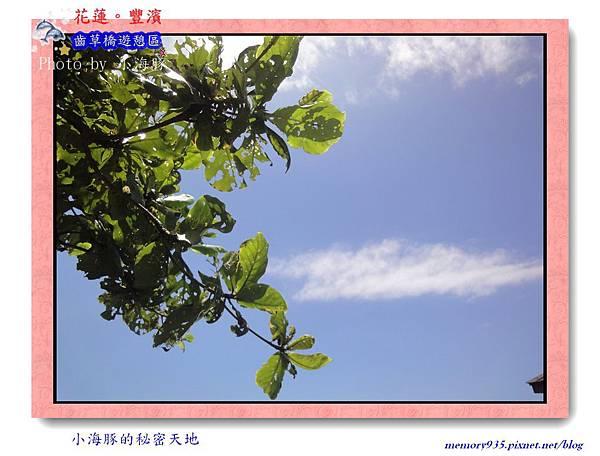 長濱鄉~齒草橋遊憩區003