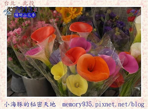 2013陽明山花季013