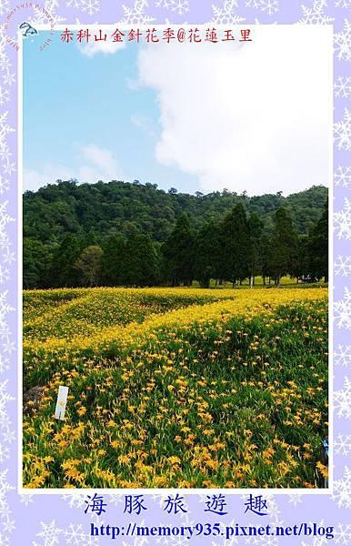 玉里~赤科山002