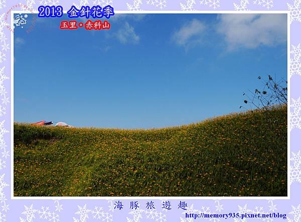 2013赤科山金針季036