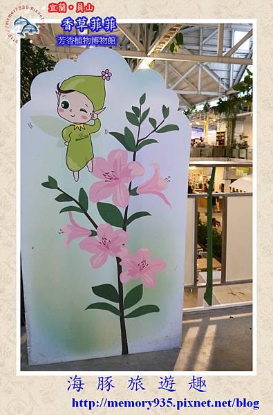 員山~香草菲菲芳香植物博物館016