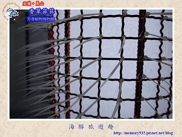 員山~香草菲菲芳香植物博物館022