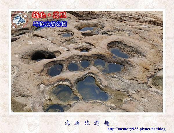萬里~野柳地質公園004