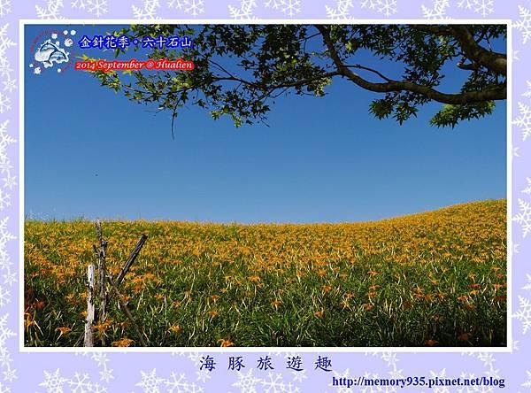 2014金針花季。六十石山008