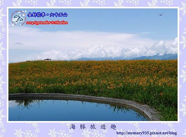 2014金針花季。六十石山013