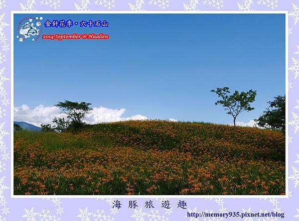 2014金針花季。六十石山014