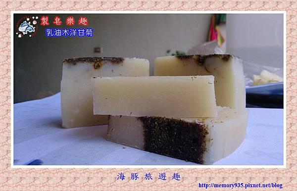 NO1. 乳油木洋甘菊