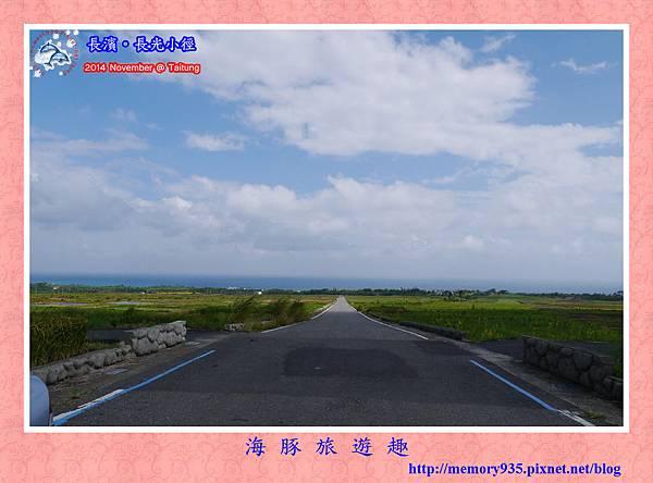 長濱。長光梯田大道