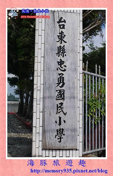 長濱。長光梯田大道 (11)