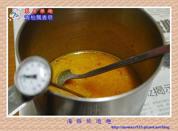 青柚飄香 (3)