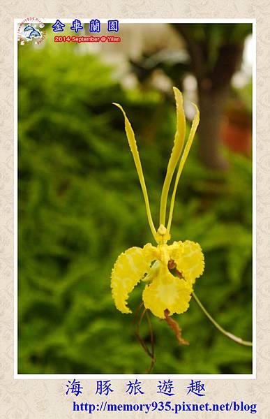 金車蘭園 (10)