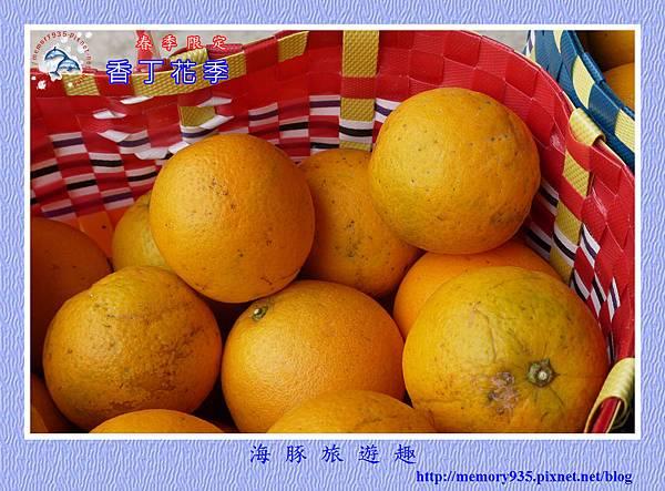 2015台東。香丁花季 (18)