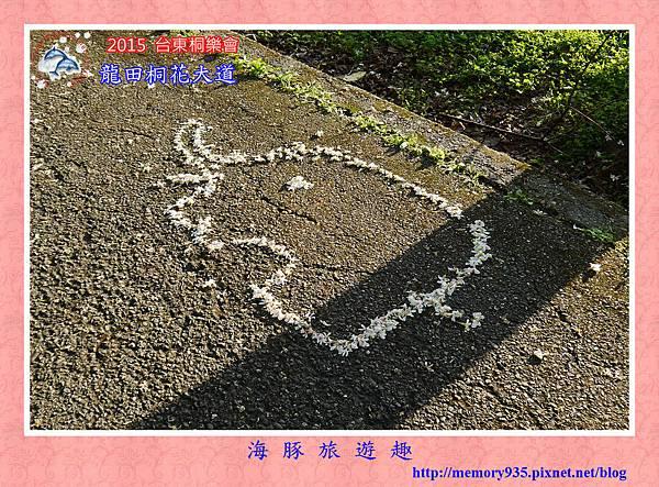 2015桐花季。龍田桐花大道 (16)