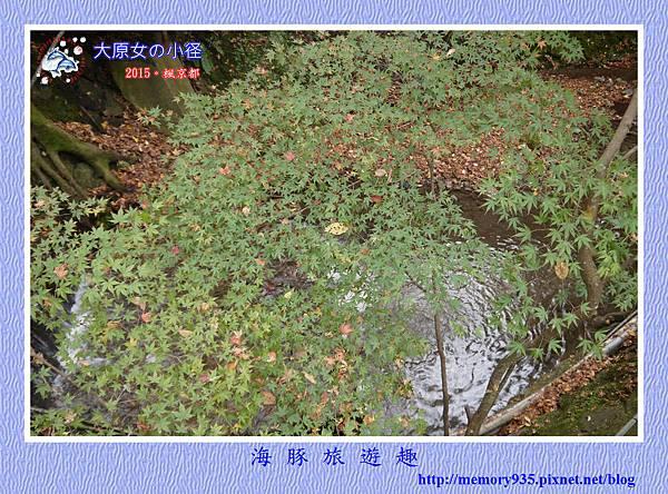 大原女の径 (11)