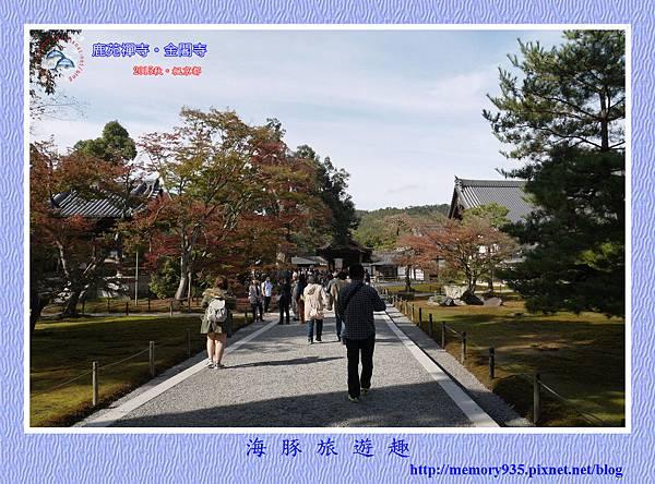 京都。金閣寺 (3)