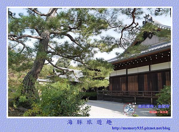 京都。金閣寺 (9)