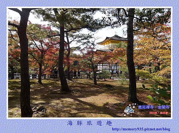 京都。金閣寺 (15)