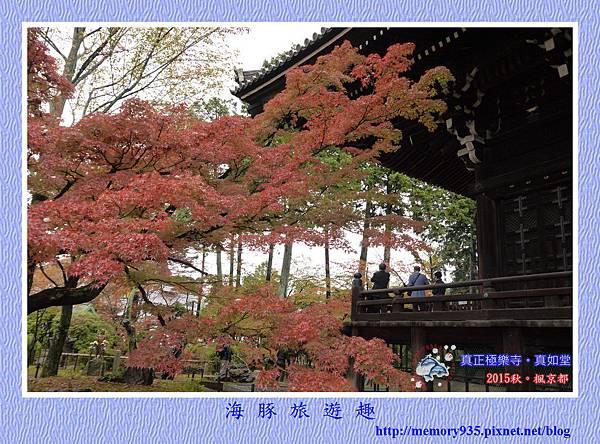 京都。真正極樂寺(真如堂) (1)