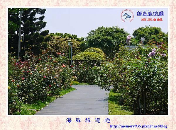 台北。新生玫瑰園 (3)