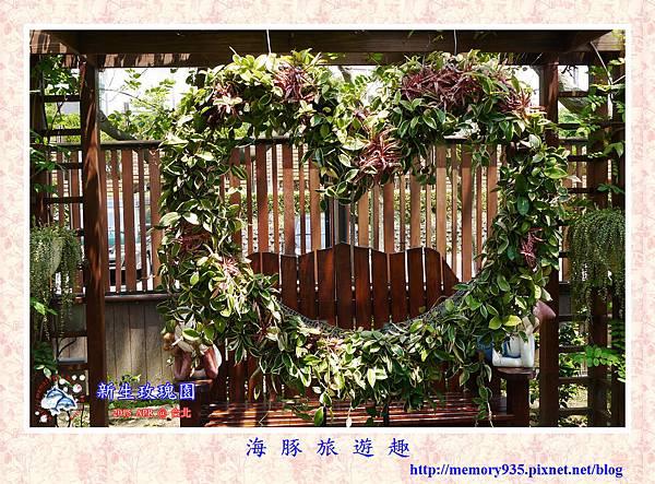 台北。新生玫瑰園 (8)