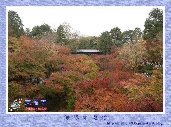 京都。東福寺 (1).jpg