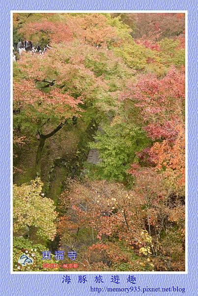 京都。東福寺 (9).jpg