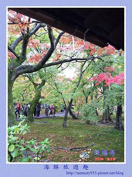 京都。東福寺 (16).jpg