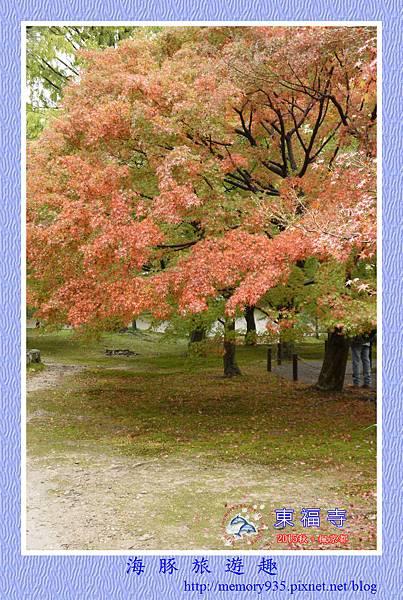 京都。東福寺 (18).jpg