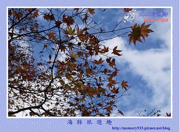 京都。南禪寺 (19).jpg