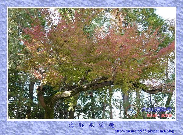 京都。南禪寺 (25).jpg