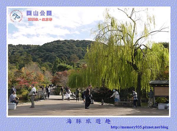 京都。圓山公園散策 (15).jpg