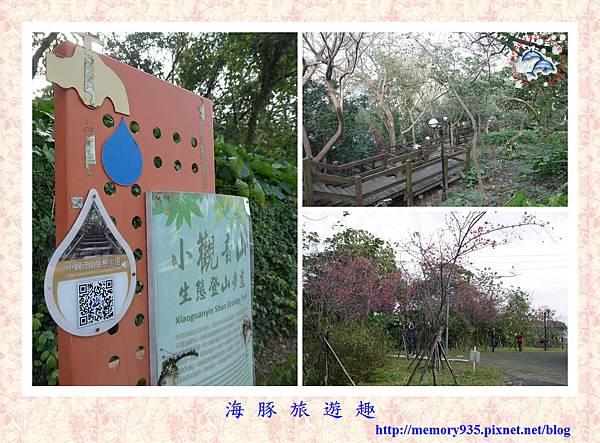 春櫻。台北自來水廠 (16).jpg