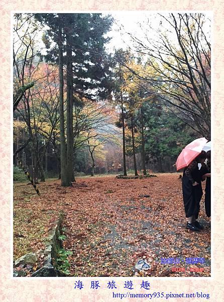 滋賀。比叡山延歷寺(橫川中堂) (14).jpg