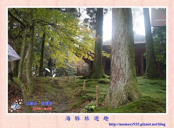 滋賀。比叡山延歷寺(西塔) (1).jpg