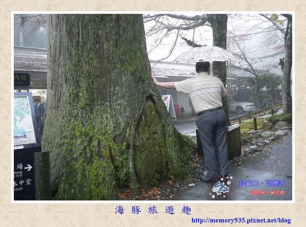 滋賀。比叡山延歷寺(東塔) (16).jpg