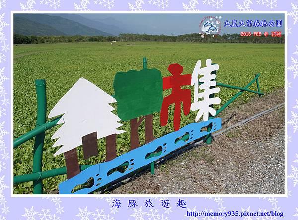 花蓮。大農大富平地森林公園 (12).jpg