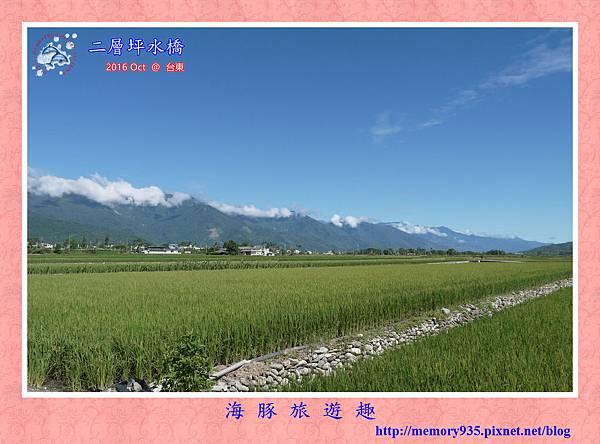 台東。二層坪水橋 (10).jpg
