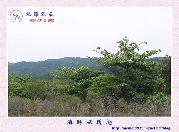 屏東。旭海溫泉 (20).jpg
