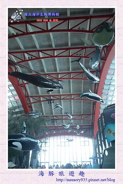 屏東。海洋生物博物館 (4).jpg