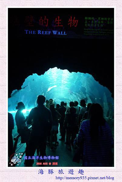 屏東。海洋生物博物館 (8).jpg